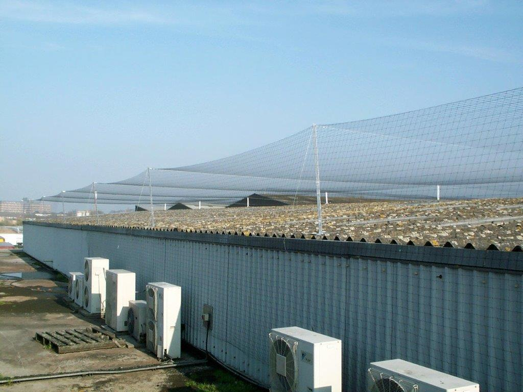 Bird Netting Installation