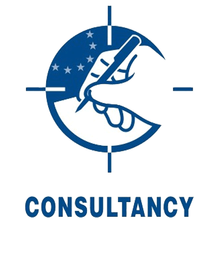 CONSULTANCY-ICON-&-TYPE-IN-BLUE