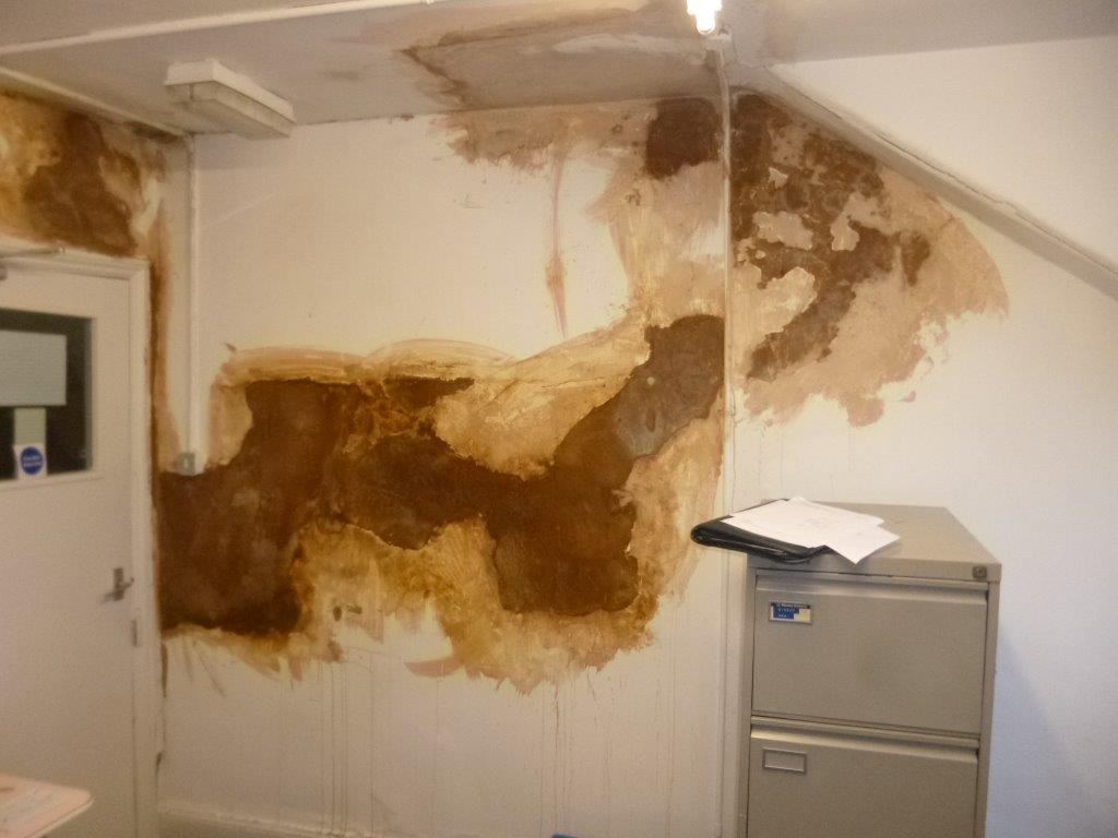 Huge Staining Across Damp Wall
