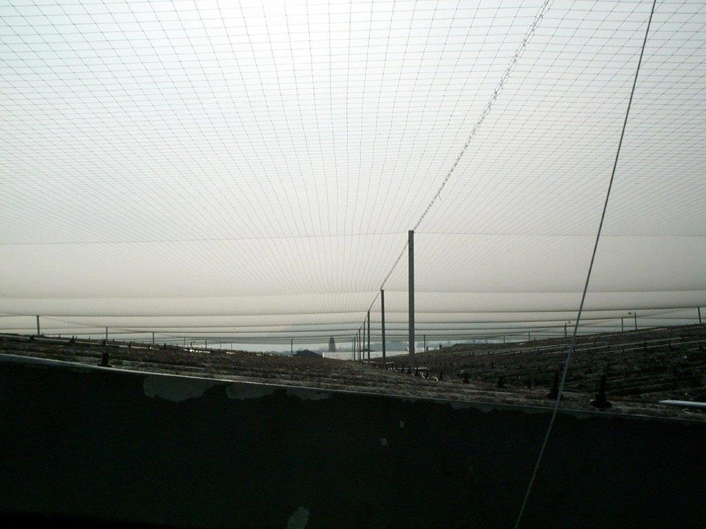 Large Scale Bird Netting Installation