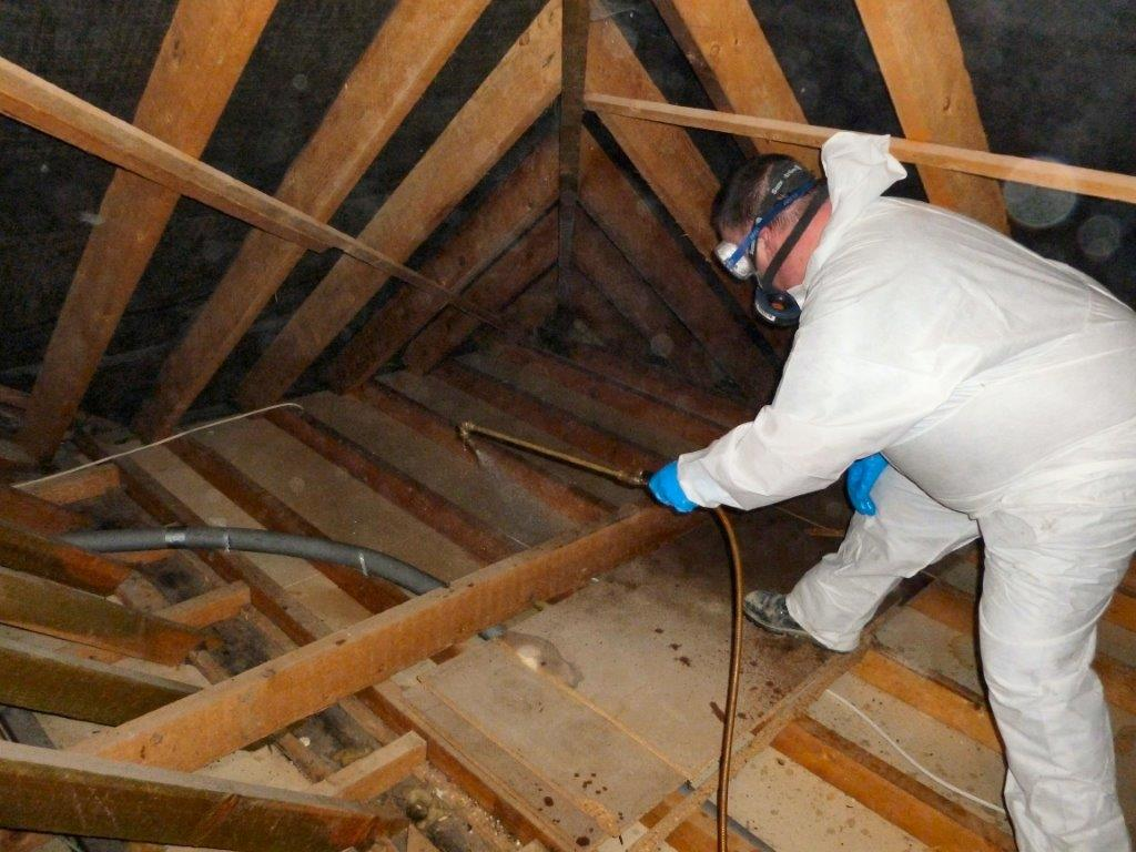 Protectahome Technician During Woodworm Timber Treatment Spraying