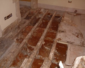 Protectahome - Dry Rot Repair Needed ©