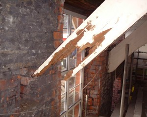 Protectahome - Dry Rot in Roof Truss