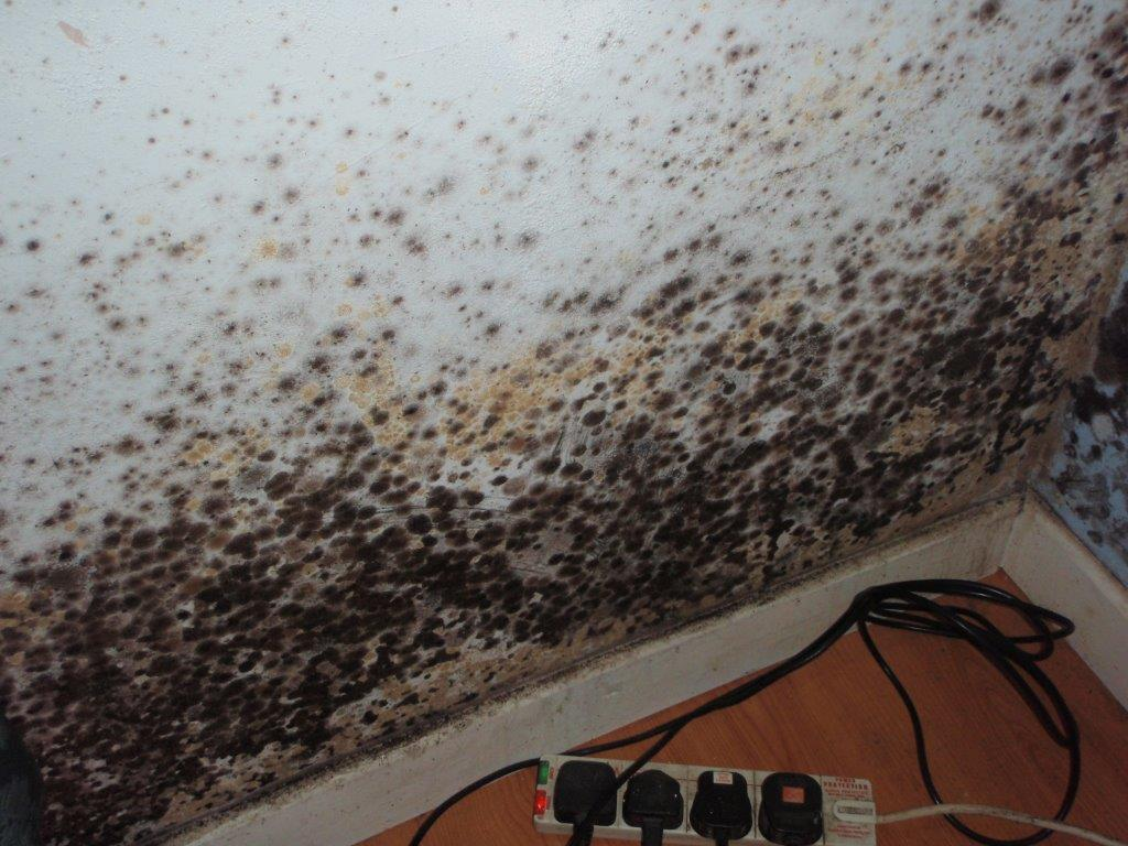 Mould Growth due to Condensation to Wall Surface