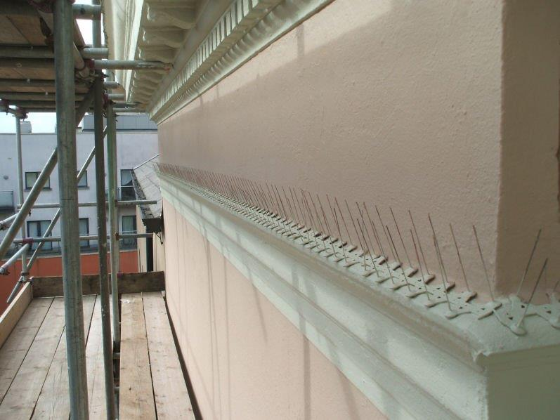Bird Spikes Installed to Commerical Property