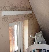 Black Mould Caused by Condensation