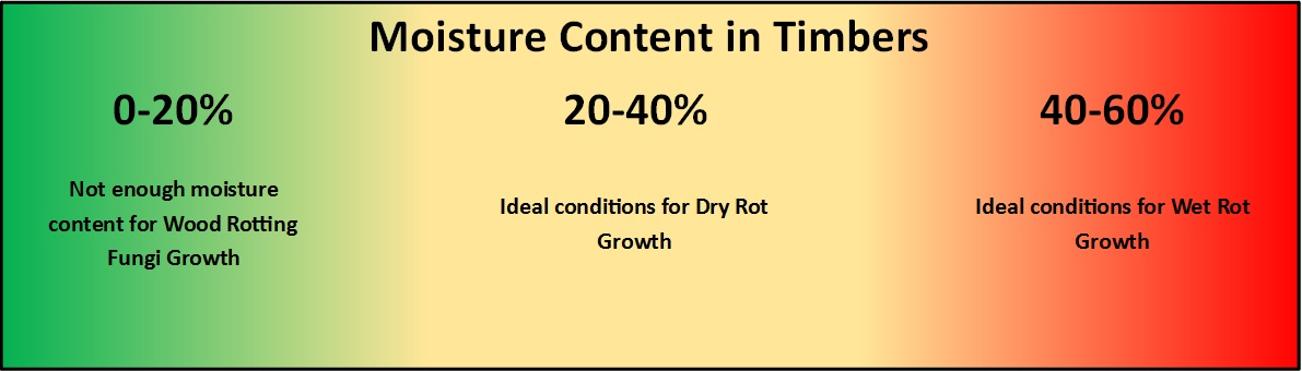 Moisture Content in Damp Timber.