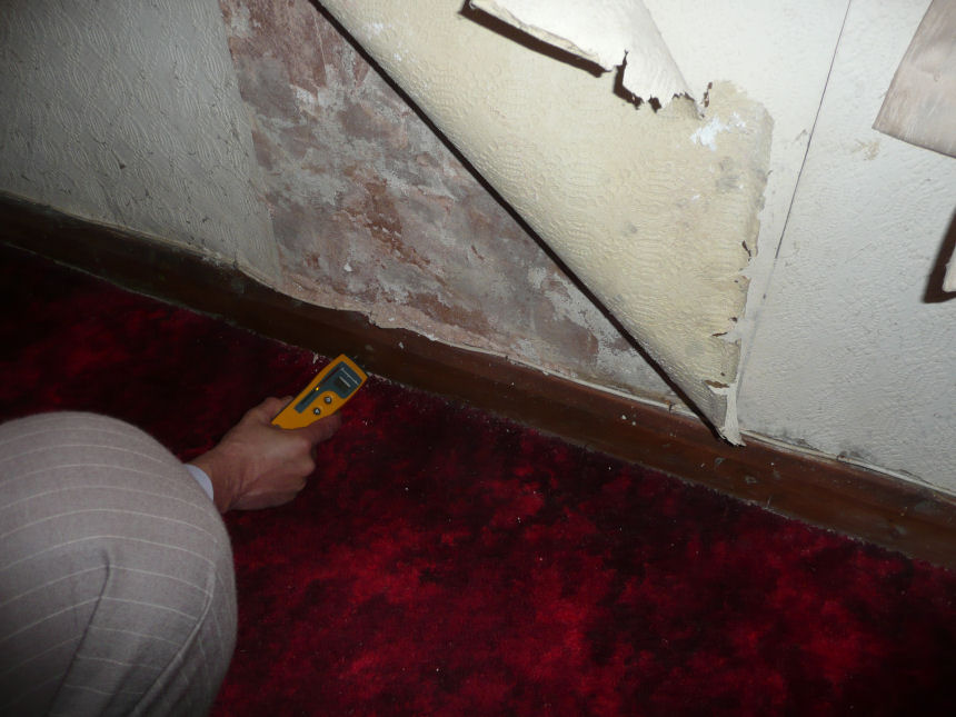 Protectahome surveyors are experienced, thorough and specialists in undertaking all forms of damp surveys.