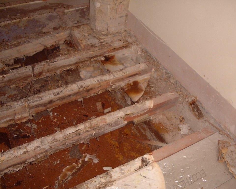 Dry Rot Attack, The Old Grammar School, Cowbridge