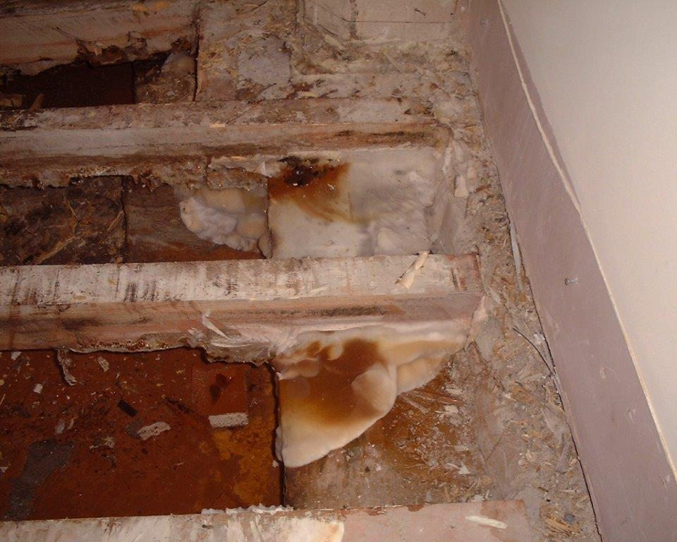 Extensive Dry Rot attack caused by poor ventilation and defective rainwater pipe.