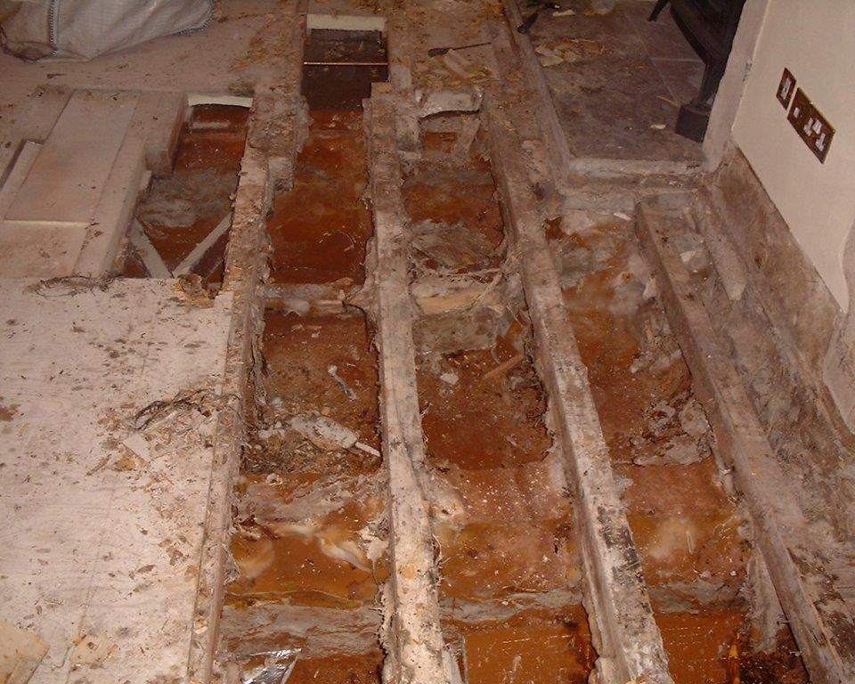 Severe Dry Rot attack to sub floor area, Cowbridge.