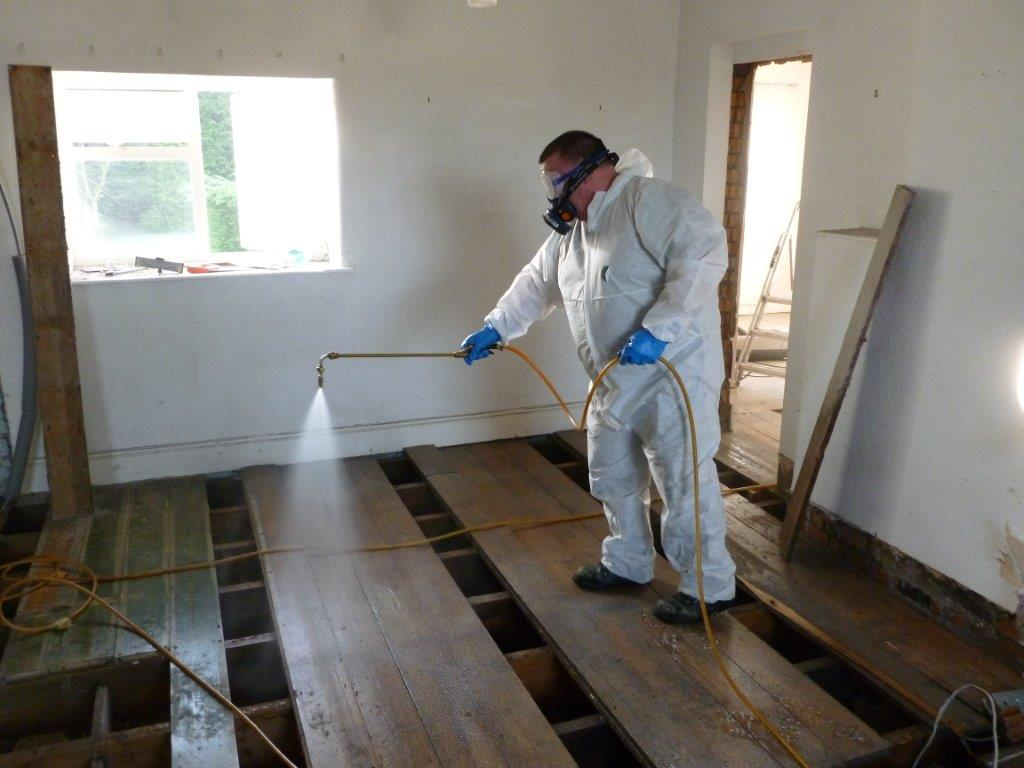 Woodworm Timber Treatment